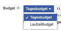 Abbildung des Menüs zur Wahl der Art des Budgets deiner Facebook Anzeige
